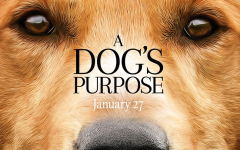 Movie highlights bonds with dogs